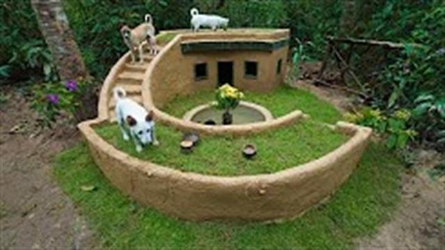 آموزش ساخت خانه لاکچری برای سگها با ابزار ساده